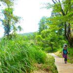 春の高尾山 -自分と自然の生命につながる-